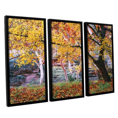 Brushstone Aravaipa Canyon 3-pc. Framed Canvas Wall Art