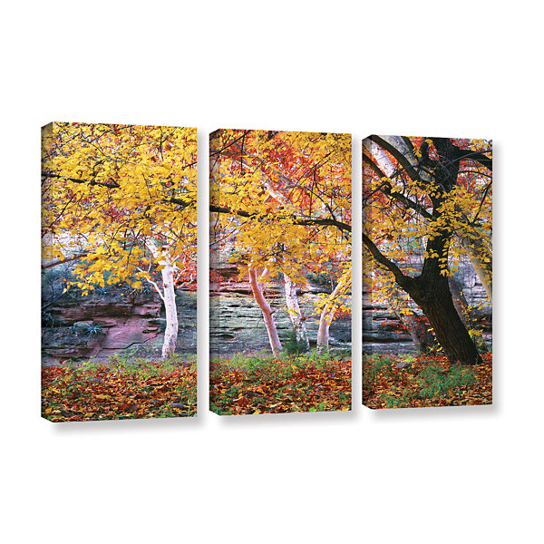 Brushstone Aravaipa Canyon 3-pc. Gallery Wrapped Canvas Wall Art
