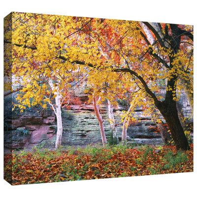Brushstone Aravaipa Canyon Gallery Wrapped CanvasWall Art