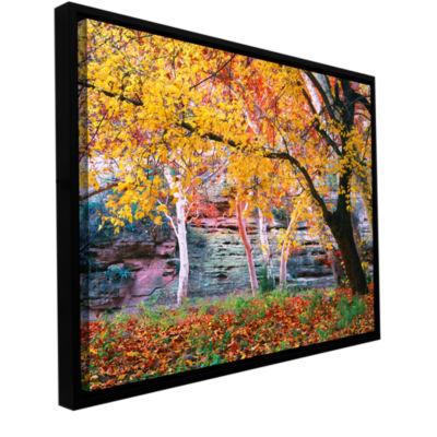 Brushstone aravaipa canyon Gallery Wrapped Floater-Framed Canvas Wall Art