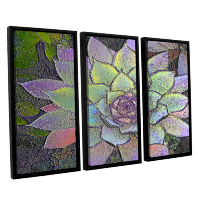 Brushstone arco iris suculento 3-pc. Floater Framed Canvas Wall Art