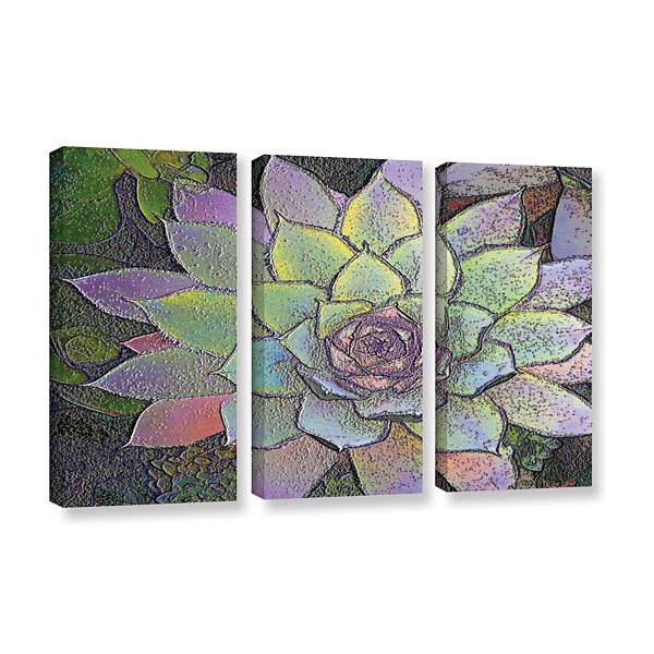 Brushstone arco iris suculento 3-pc. Gallery Wrapped Canvas Wall Art