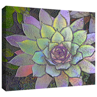 Brushstone arco iris suculento Gallery Wrapped Canvas Wall Art