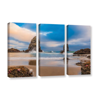 Brushstone Aren'T Starfish Supposed To Be Underwater 3-pc. Gallery Wrapped Canvas Wall Art