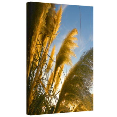 Brushstone August Pampas Gallery Wrapped Canvas Wall Art