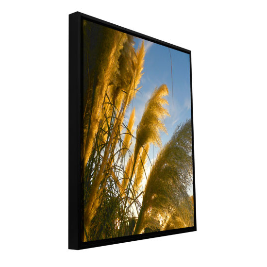 Brushstone August Pampas Gallery Wrapped Framed Canvas Wall Art