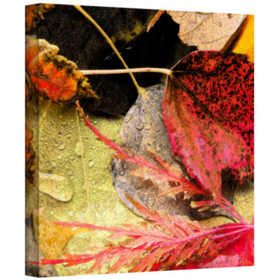Brushstone autumn array Gallery Wrapped Canvas Wall Art