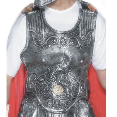 Roman Armour Breast Plate Rubber Adult Costume