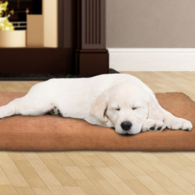 Petmaker 3 in. Foam Pet Bed