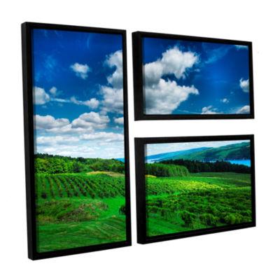 Brushstone Vineyard and Lake 3-pc. Flag Floater Framed Canvas Wall Art