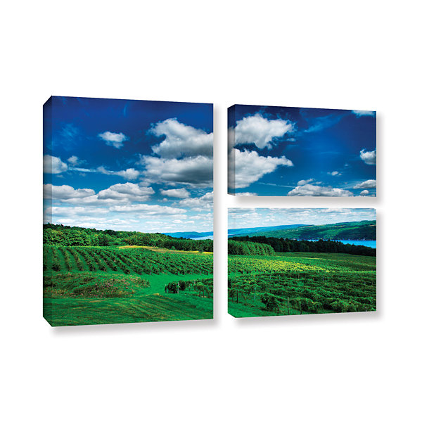 Brushstone Vineyard and Lake 3-pc. Flag Gallery Wrapped Canvas Wall Art