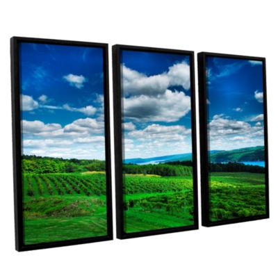 Brushstone Vineyard and Lake 3-pc. Floater FramedCanvas Wall Art