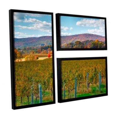 Brushstone Vineyard in Autumn 3-pc. Flag Floater Framed Canvas Wall Art