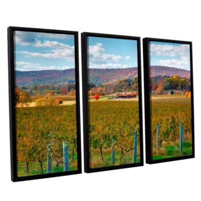 Brushstone Vineyard in Autumn 3-pc. Floater FramedCanvas Wall Art