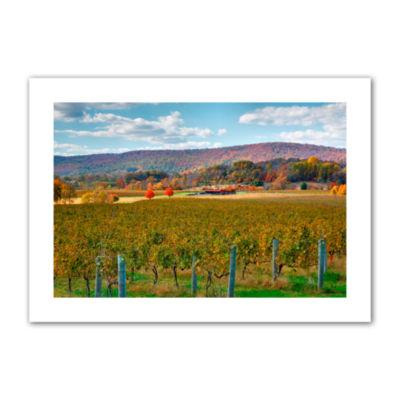 Brushstone Vineyard in Autumn Canvas Poster Wall Art
