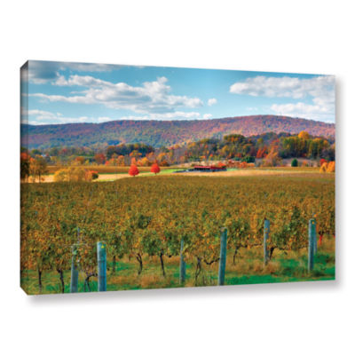 Brushstone Vineyard in Autumn Gallery Wrapped Canvas Wall Art