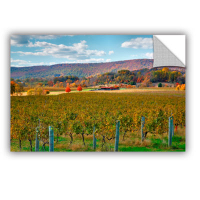 Brushstone Vineyard in Autumn Removable Wall Decal