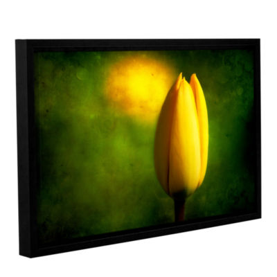 Brushstone The Tulip Hallucinations Gallery Wrapped Framed Canvas Wall Art