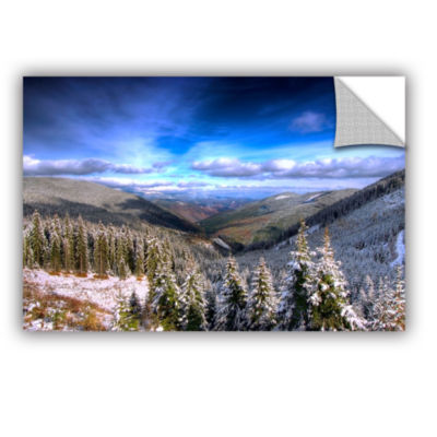 Brushstone Winter Vision Removable Wall Decal
