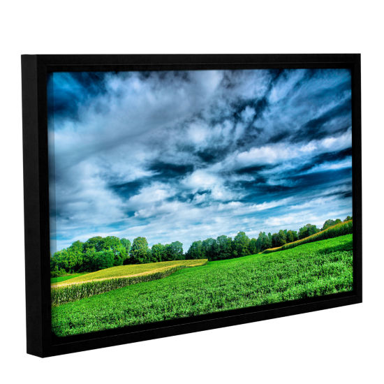 Brushstone Field of Dreams Gallery Wrapped Floater-Framed Canvas Wall Art