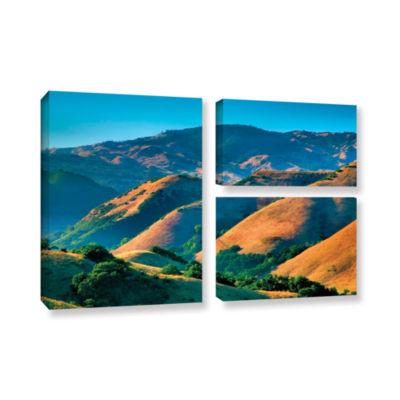 Brushstone Golden Hills 3-pc. Flag Gallery WrappedCanvas Wall Art