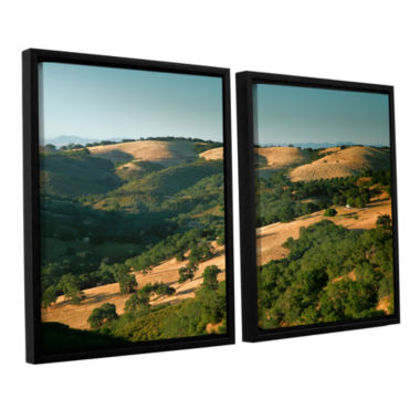 Brushstone Hills of California 2-pc. Floater Framed Canvas Wall Art