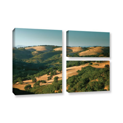 Brushstone Hills of California 3-pc. Flag GalleryWrapped Canvas Wall Art
