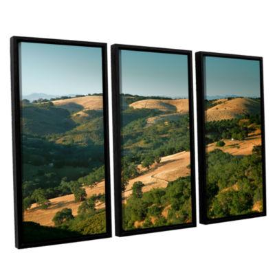 Brushstone Hills of California 3-pc. Floater Framed Canvas Wall Art