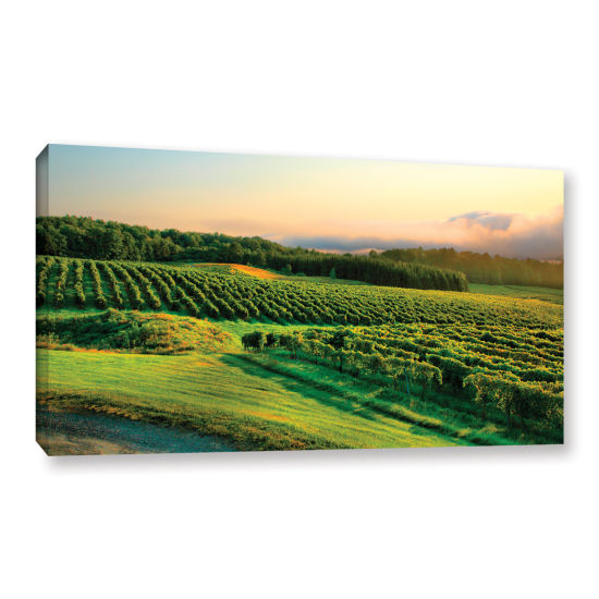Brushstone Hill-Top Vineyard Gallery Wrapped Canvas Wall Art