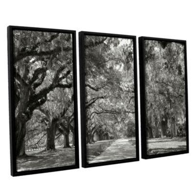 Brushstone Live Oak Avenue 3-pc. Floater Framed Canvas Wall Art