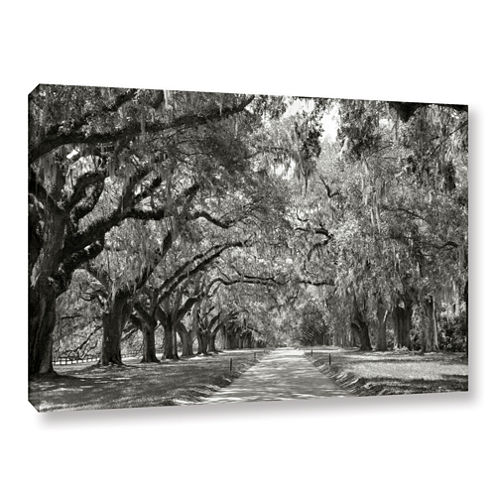 Brushstone Live Oak Avenue Gallery Wrapped CanvasWall Art