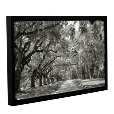 Brushstone Live Oak Avenue Gallery Wrapped Floater-Framed Canvas Wall Art