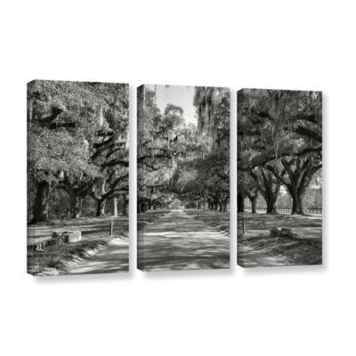 Brushstone Live Oak Avenue II 3-pc. Gallery Wrapped Canvas Wall Art