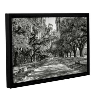 Brushstone Live Oak Avenue II Gallery Wrapped Floater-Framed Canvas Wall Art
