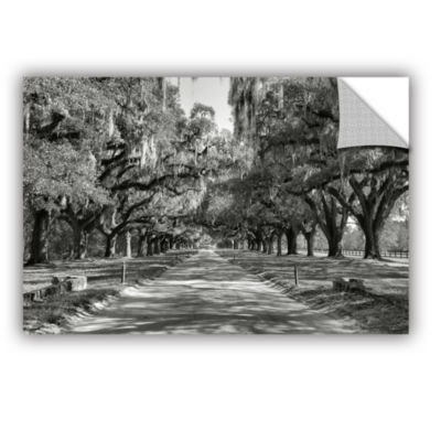 Brushstone Live Oak Avenue II Removable Wall Decal