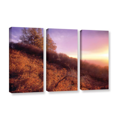 Brushstone Fire Light 3-pc. Gallery Wrapped CanvasWall Art