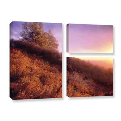 Brushstone Fire Light 3-pc. Flag Gallery Wrapped Canvas Wall Art