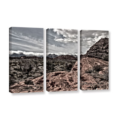 Brushstone Fingertip Afternoon 3-pc. Gallery Wrapped Canvas Wall Art