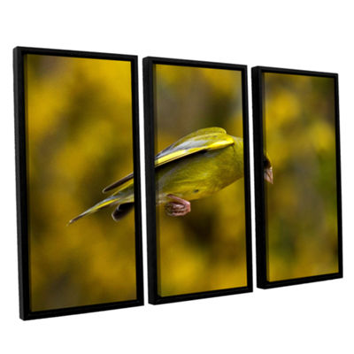 Brushstone Finch Leaping 1 3-pc. Floater Framed Canvas Wall Art