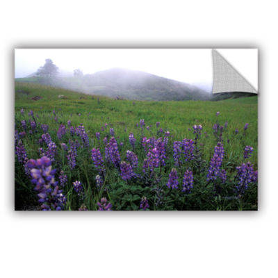 Brushstone Figueroa Mountain With Fog Removable Wall Decal