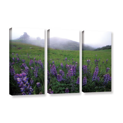 Brushstone Figueroa Mountain With Fog 3-pc. Gallery Wrapped Canvas Wall Art