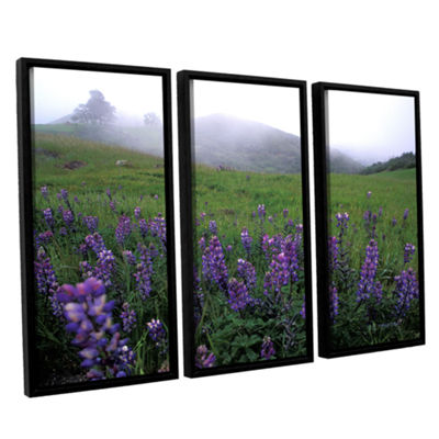 Brushstone Figueroa Mountain With Fog 3-pc. Floater-Framed Canvas Wall Art