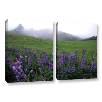 Brushstone Figueroa Mountain With Fog 2-pc. Gallery Wrapped Canvas Wall Art
