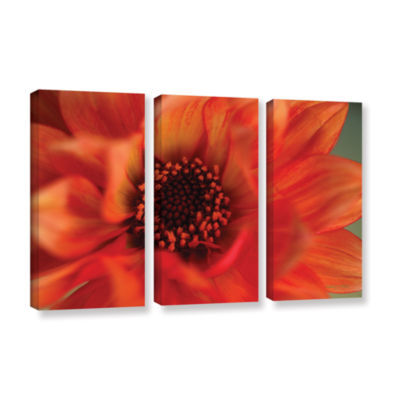Brushstone Fiery Dahlia 3-pc. Gallery Wrapped Canvas Wall Art