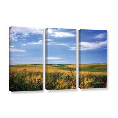 Brushstone Field Of Dreams 3-pc. Gallery Wrapped Canvas Wall Art