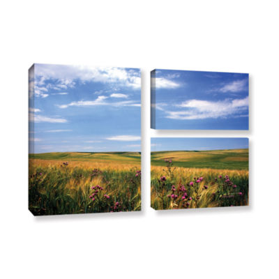 Brushstone Field Of Dreams 3-pc. Flag Gallery Wrapped Canvas Wall Art