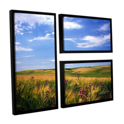 Brushstone Field Of Dreams 3-pc. Flag Floater Framed Canvas Wall Art