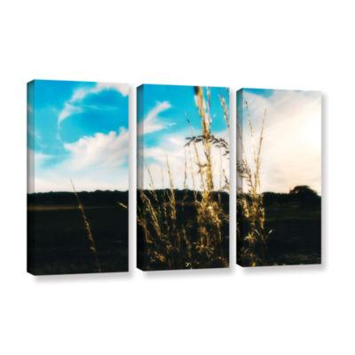 Brushstone Field 3-pc. Gallery Wrapped Canvas WallArt