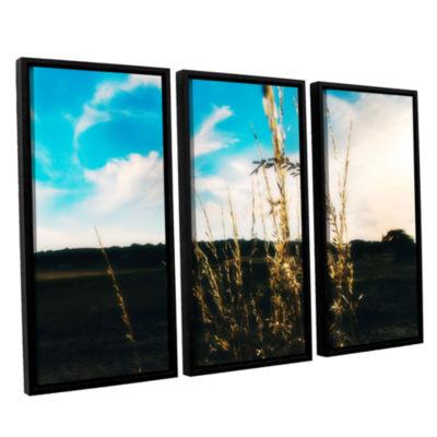 Brushstone Field 3-pc. Floater Framed Canvas WallArt