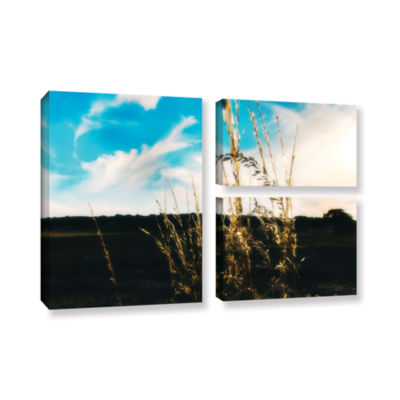 Brushstone Field 3-pc. Flag Gallery Wrapped CanvasWall Art
